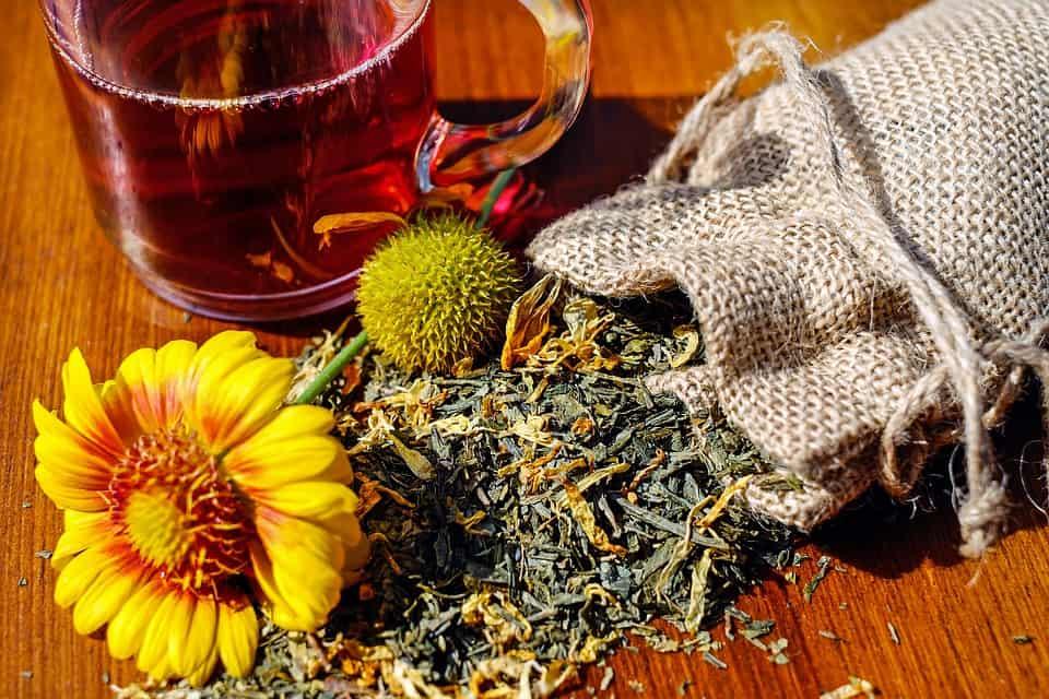 Zioła herba